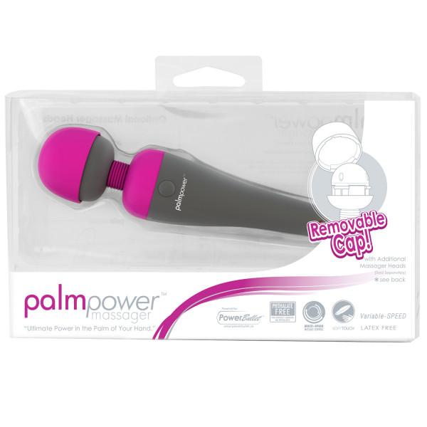 Palm Power Mini Massage Wand  3
